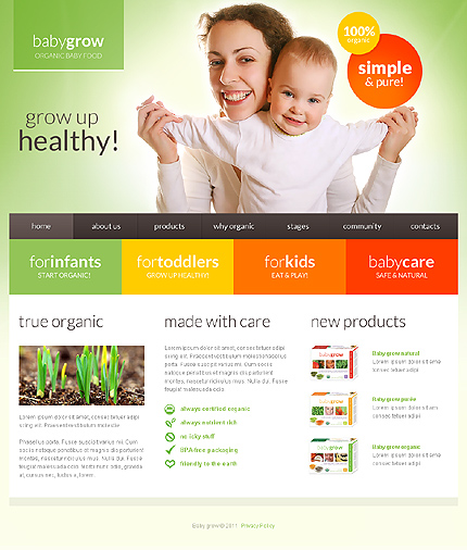 Toronto Web Design Services from TechTouch